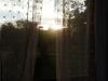 slunce