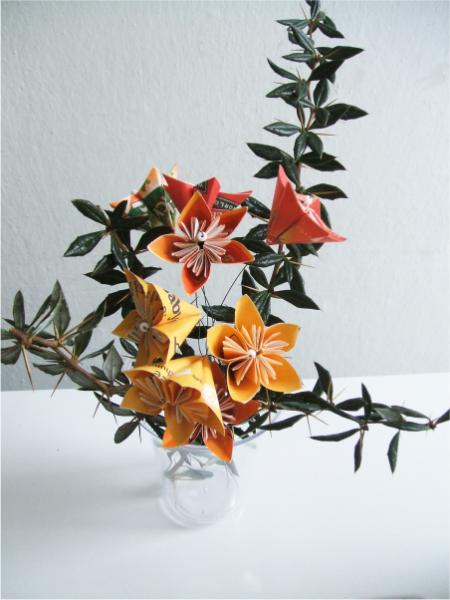 c-kvety