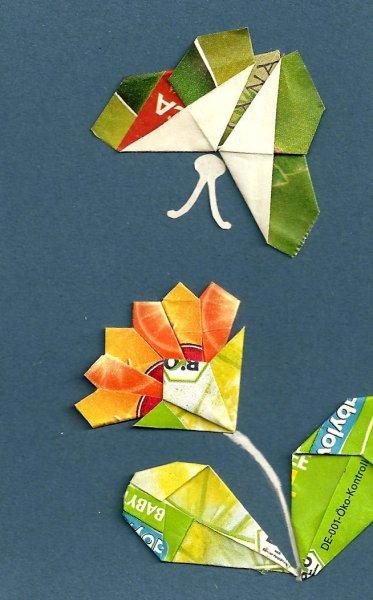 c-motylakveti